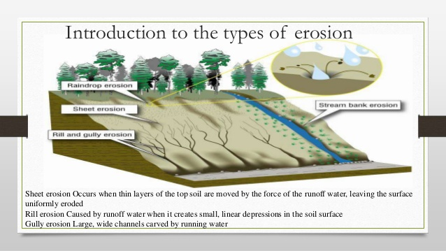 However Water Or Wind Moving Over The Surface Will Remove More Soil And Contribute To Sheet Rill Gully Erosion Also Tends